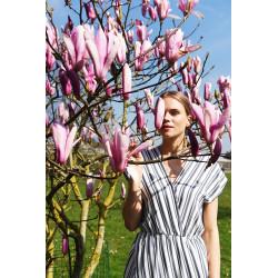Vienna Dress PDF