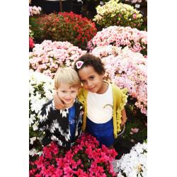 Fleur Gilet PDF